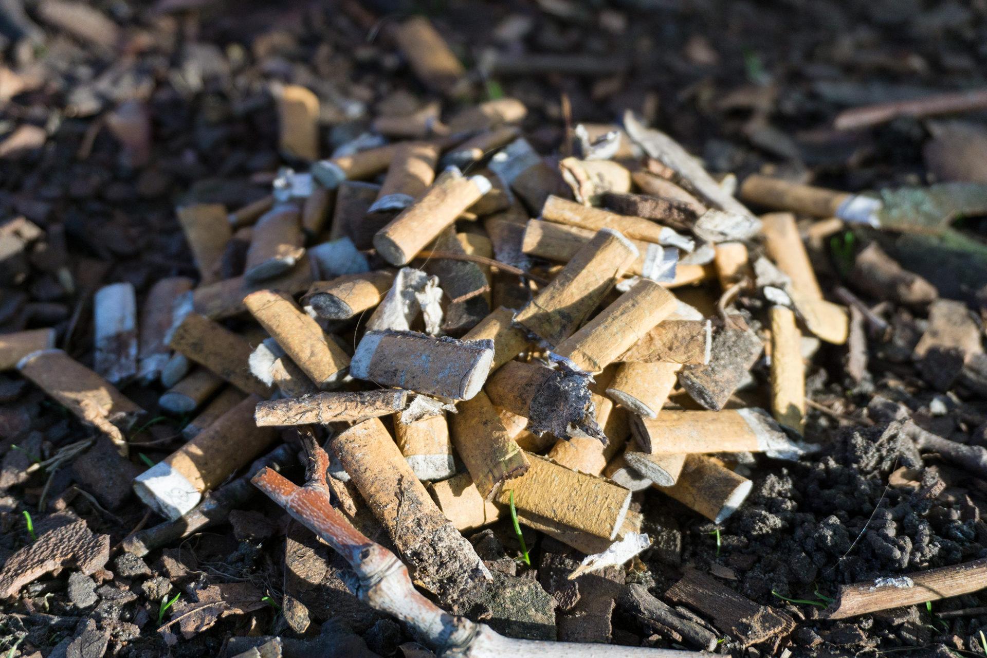 Zigarettenkippen Müll