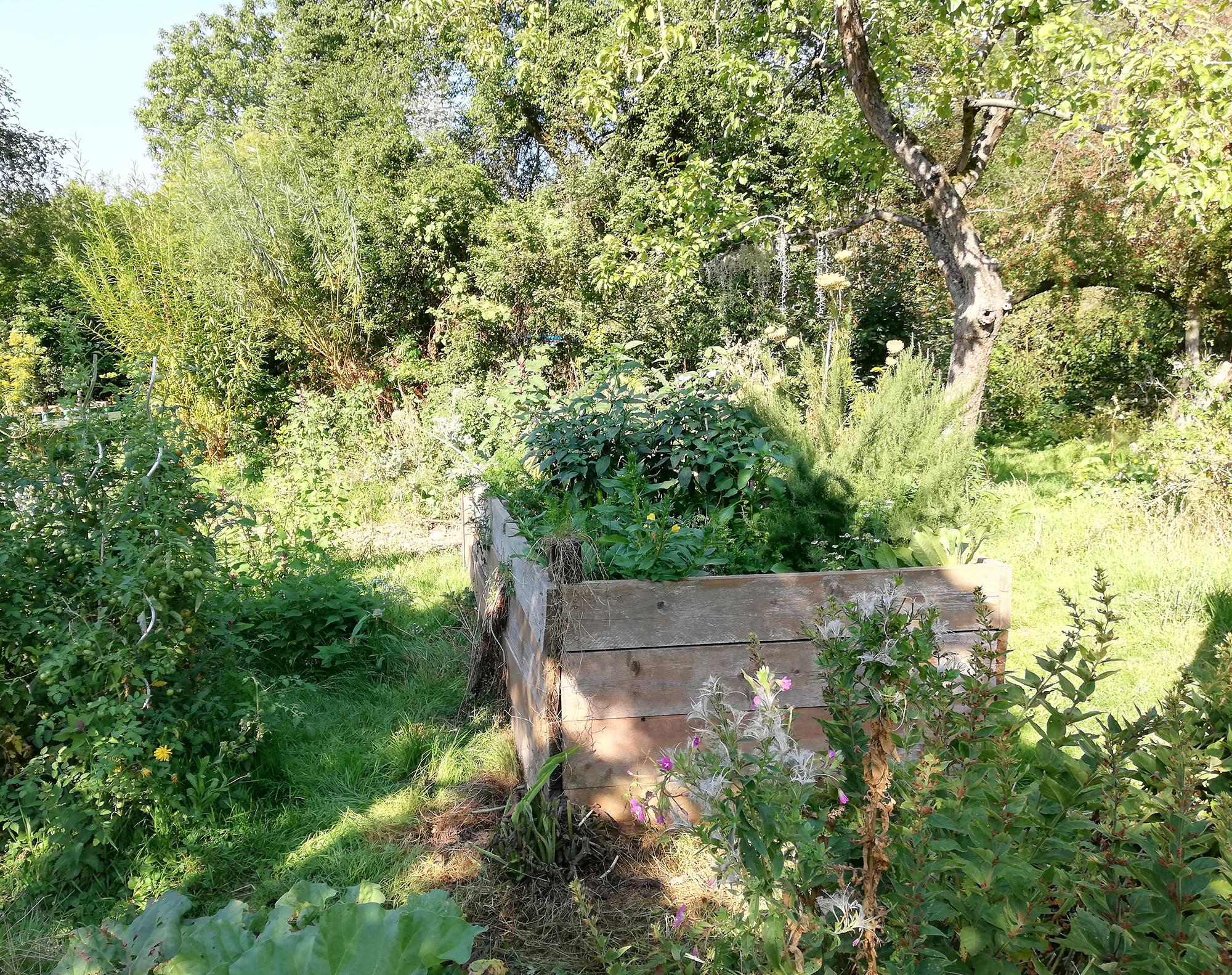 Permakultur Gemüseanbau