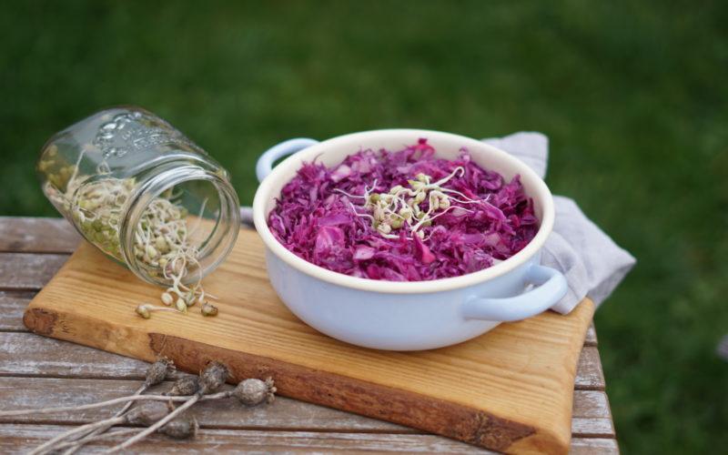 Rotkohlsalat mit Sprossen