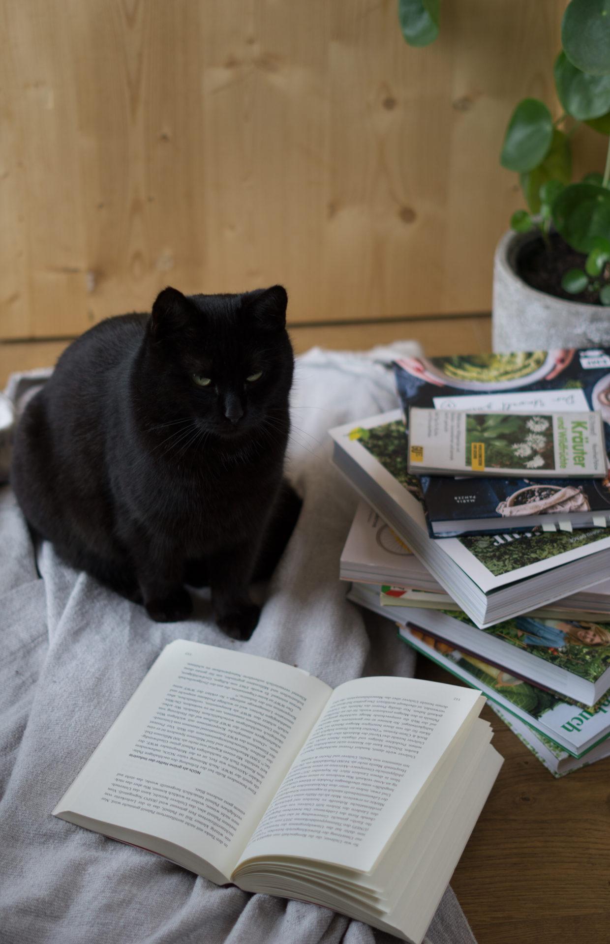 Bücher über Umweltschutz