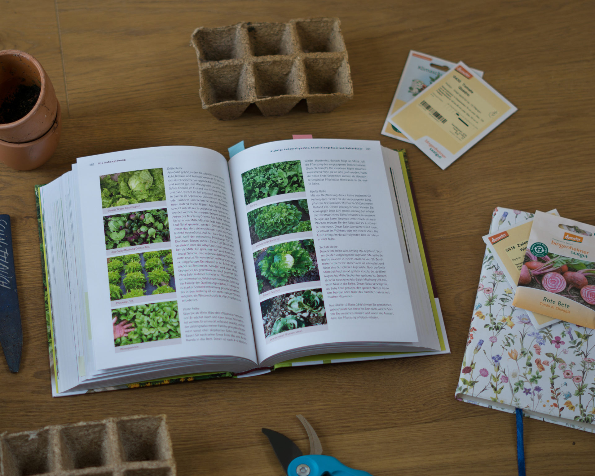 Biogemüse anbauen Buch