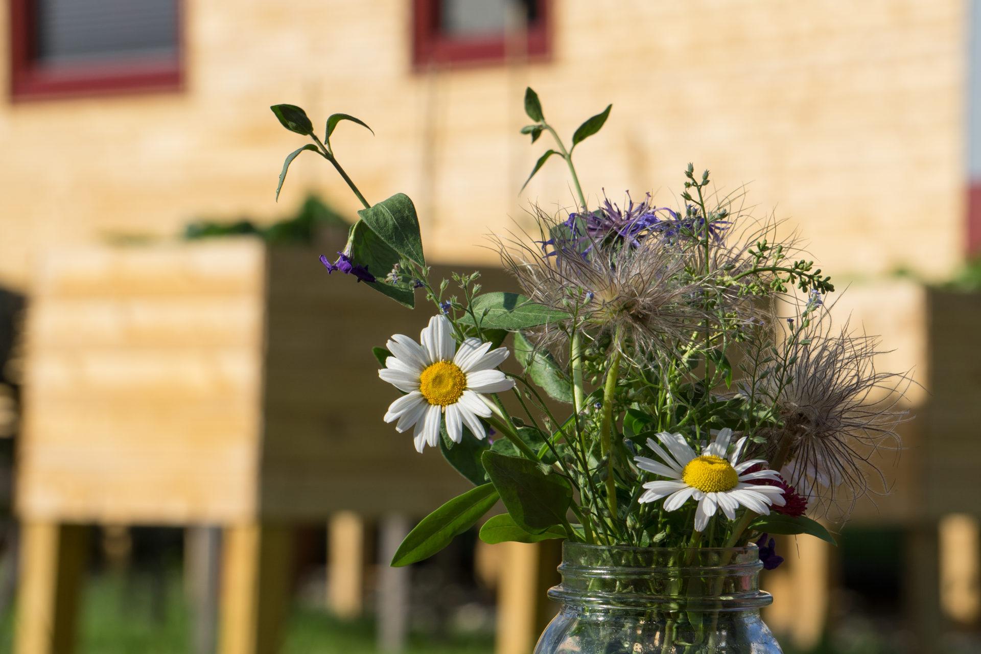 Tiny House Garten